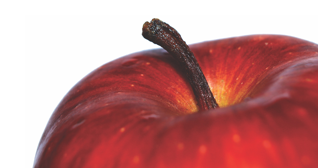 Close-up of red apple.