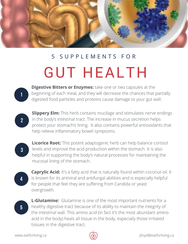 5 Supplements for Gut Health
