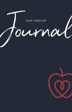 Three Day Journal